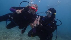 Divers underwater in Cozumel