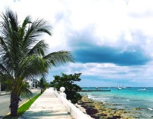 Cozumel waterfront esplanade with cloudy sky and palm tree