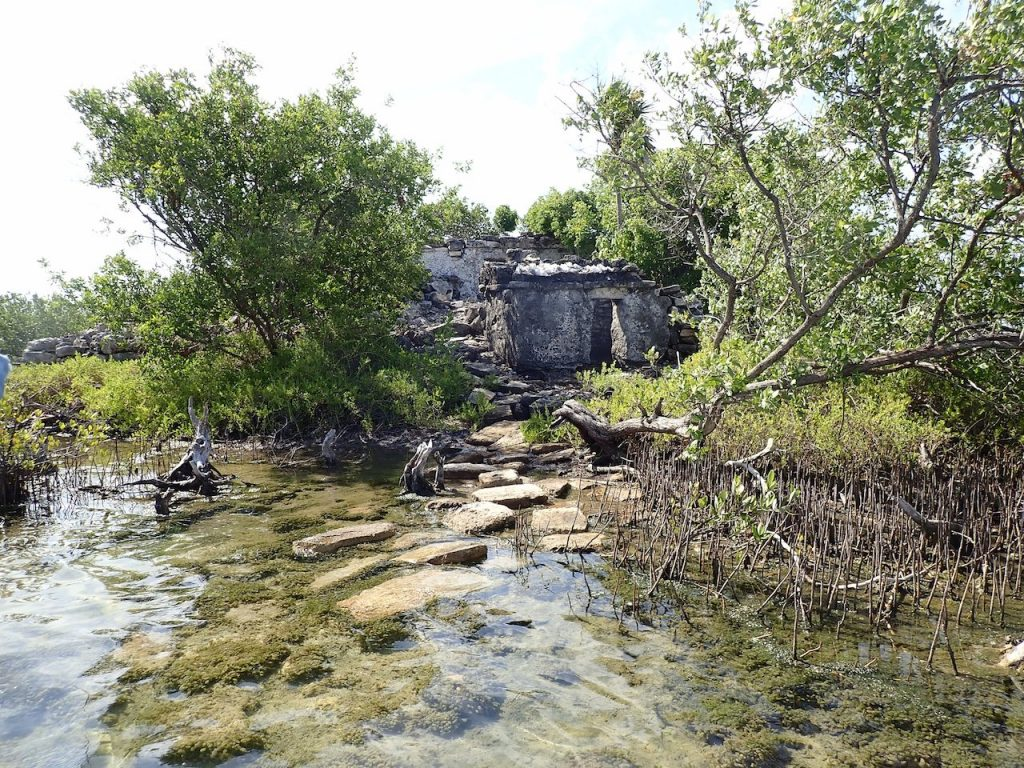 Mayan building in norther mangrove zone on Cozumel island