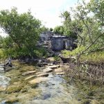 Practical Guide to Cozumel's Mayan Ruins Sites