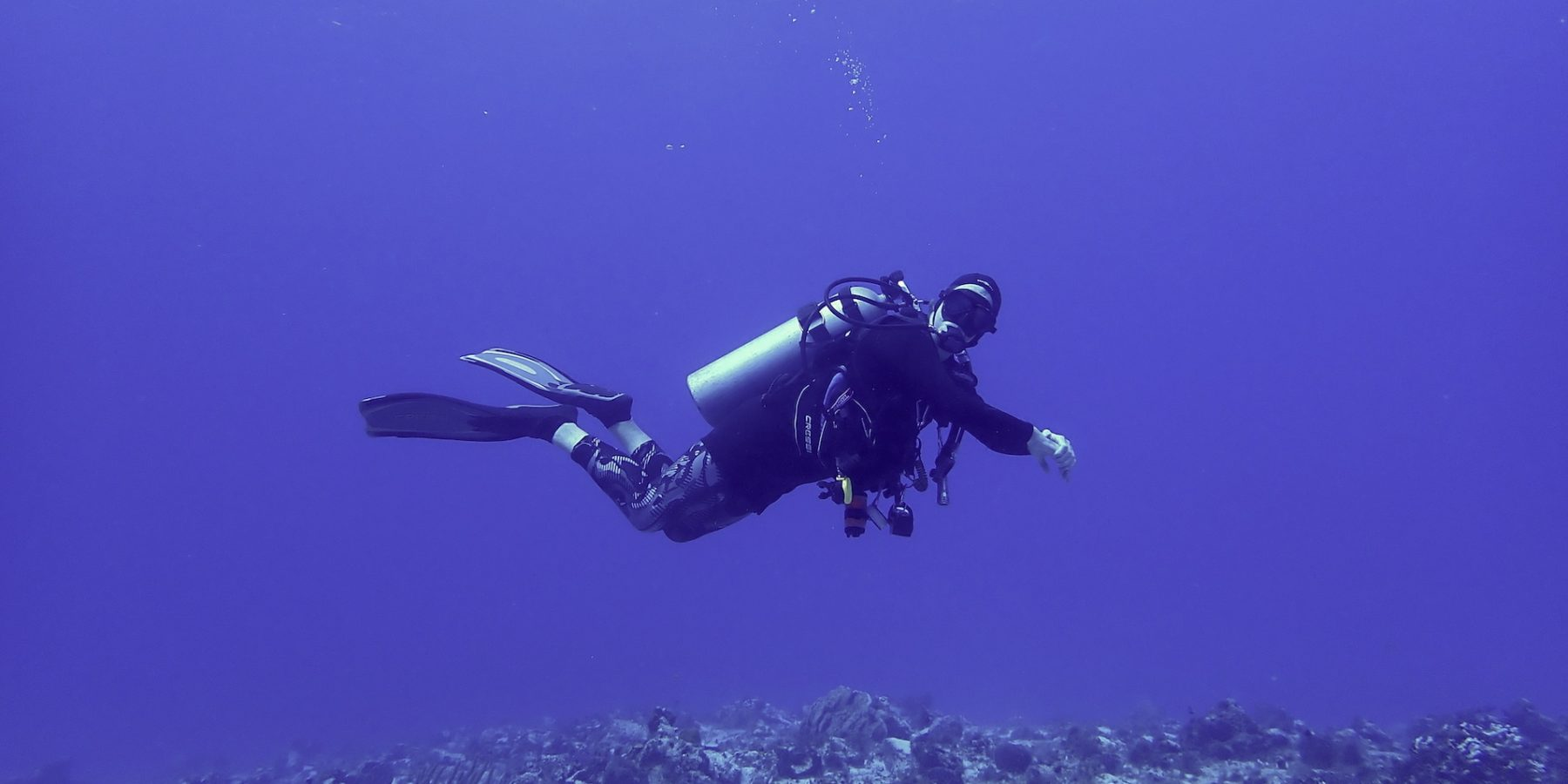 woman diving on coral reef in blue water